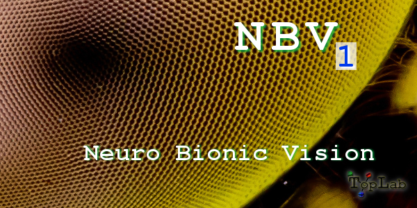 nbv_one